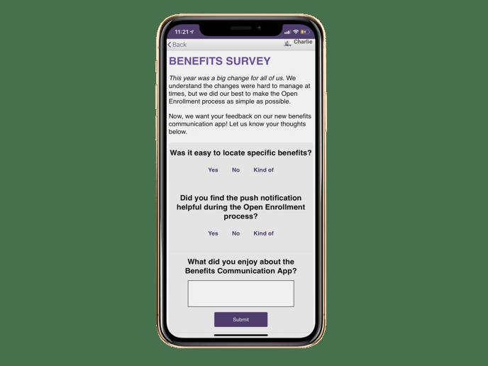 survey mockup